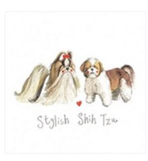 EDB/Stylish Shih Tzu