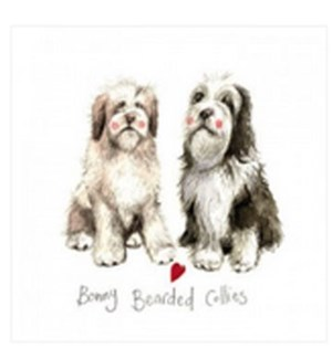 EDB/Bonny Bearded Collies