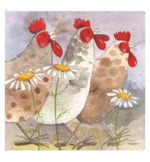 MAG/Three Hens