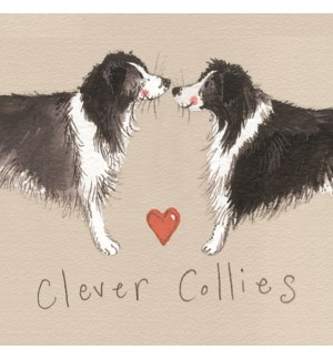 MAG/Clever Collies