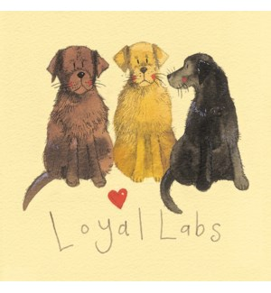 MAG/Loyal Labs