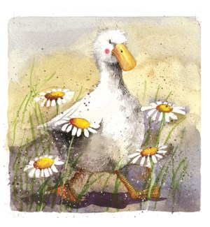 MAG/Duck In The Daisies