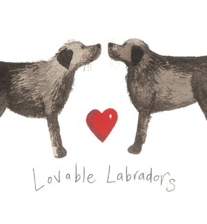 MAG/Loveable Labradors