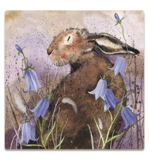 MAG/Hare And Harebell