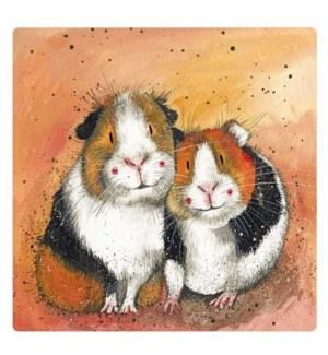 MAG/The Guinea Pig Guys