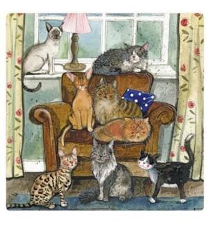 MAG/Cat House