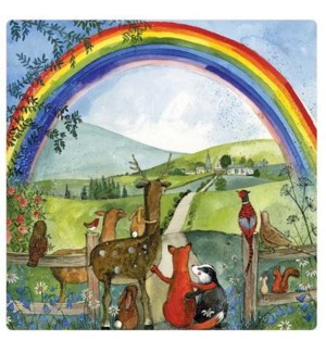 MAG/Looking For Rainbows