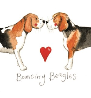 MAG/Bouncing Beagles
