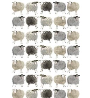 GIFTWRAP/SHEEP