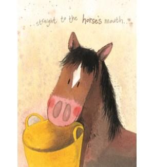 EDB/Horse's Mouth