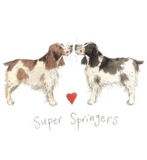 KY/SUPER SPRINGERS