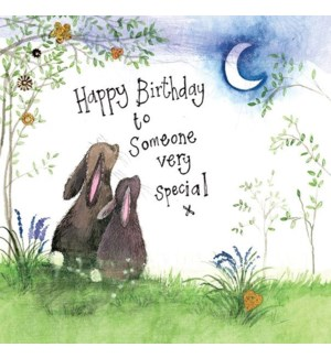 BDB/Special Birthday