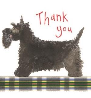 TYB/Thank You Dog