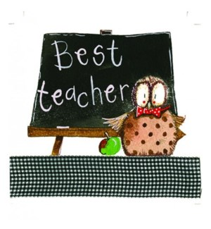 TEACHER/Best Teacher