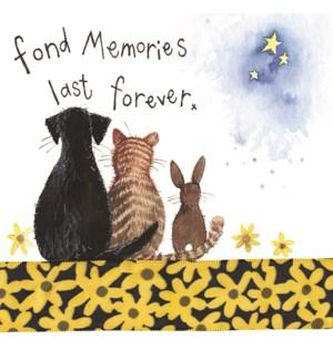 PSYB/Memories