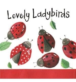 NOTEPAD/Ladybirds (Mini)