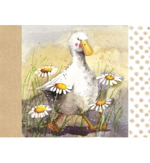 PLACEMAT/Duck In The Daisies