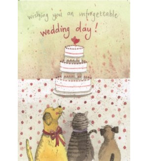WDB/Wedding Cake
