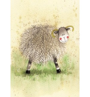 BL/Woolly Sheep