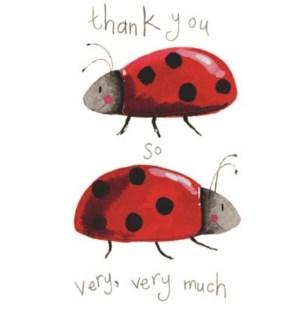 NOTES/Ladybird TY