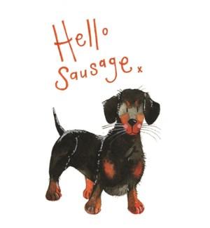 NOTES/Hello Sausage