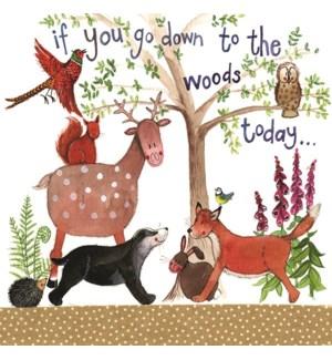 EDB/Down To The Woods