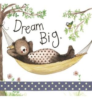 EDB/Dream Big