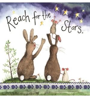EDB/Reach For The Stars