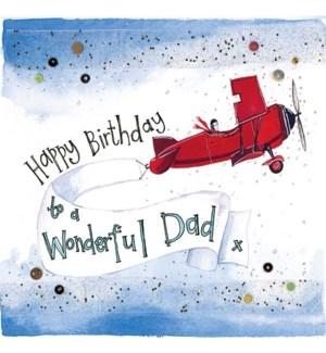 RBDB/Dad Aeroplane