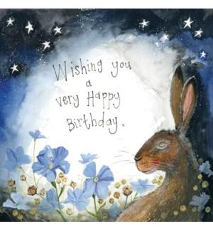 BDB/Starlight Hare