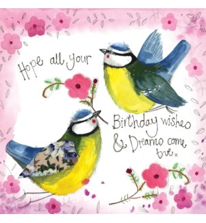 BDB/SUNSHINE BIRDS