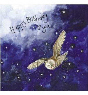 BDB/Starlight Barn Owl