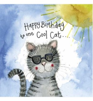 BDB/Sunshine Cool Cat