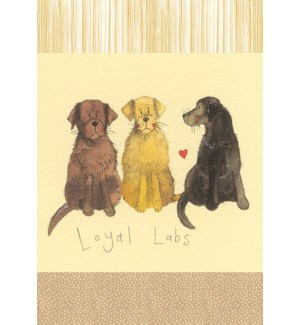 TEATOWEL/Loyal Labs