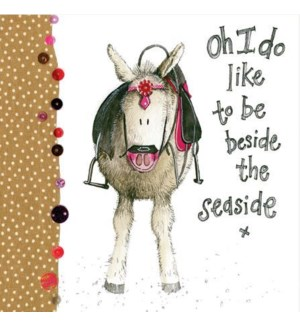 ED/Seaside Donkey