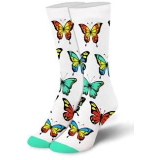 SOCKS/Butterfly