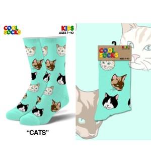 SOCKS/Cats