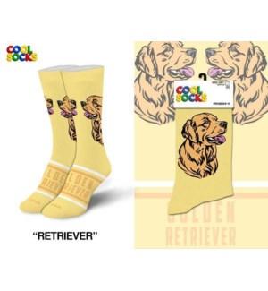 SOCKS/ Golden Retriever