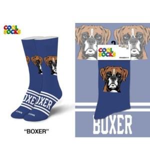 SOCKS/ Boxer