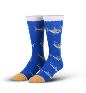 SOCKS/Sharks