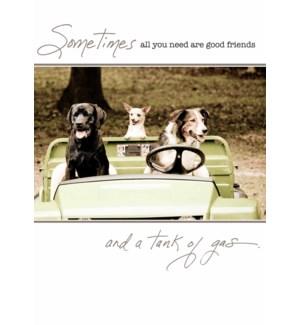 FR/Three dogs in John Deere