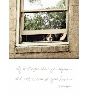 GW/Doggie In The Window