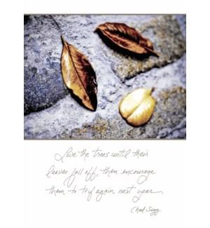 EN/Autumn leaves (color)