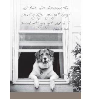 RT/Dog Leaning Out Window