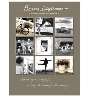 CAT/Bonair Daydream Catalog