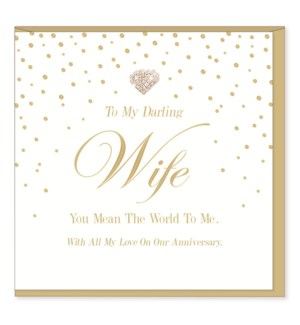 ANB/Wife Anniversary