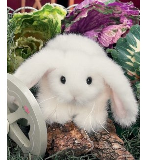 BUNNY/Bunnykin