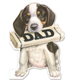 FD/Doggy Dad Newspaper