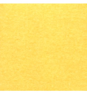TISSUE/Bright Yellow