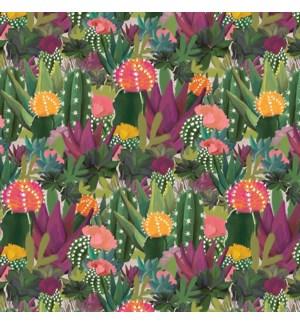 WRAP/Colourful Cacti